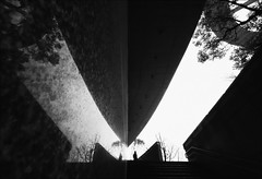F_MG_7763-1-BW-Canon 6DII-Sigma 12-24mm-May Lee 廖藹淳 (May-margy) Tags: maymargy bw 黑白 人像 逆光 剪影 現代建築 花高岩 牆壁 反射 臉譜 街拍 線條造型與光影 天馬行空鏡頭的異想世界 心象意象與影像 幾何構圖 點景 點人 台灣攝影師 台北市 台灣 中華民國 樹木 fmg77631bw portrait viewfromback backlighting silhouette modern architecture granite wall mirroredimages facesinplaces 階梯 stairs 遮雨棚 canopy taipeicity taiwanphotographer humaningeometry humanelement canon6dii sigma1224mm maylee廖藹淳 streetviewphotography mylensandmyimagination linesformandlightandshadow naturalcoincidencethrumylens