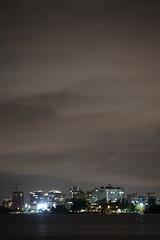Coconut Grove (Comiccreator24) Tags: youngphotographer teenagephotographer florida usa unitedstates america unitedstatesofamerica creativephotography creative photography comiccreator24 southflorida sky skyphotography soflo floridausa floridaphotographer march 2019 march2019 70300mm vertical verticalphoto verticallandscape landscape landscapephotography nightphotography night nightography nightlife urbannight miamibynight cloudynight cloudyweather overcast overcastweather overcastskies miamidade county miamidadecounty miami miamiflorida miamifl biscaynebay skyline bigsky city cityskyline cityatnight citynight cityscape cityonthesea coconutgrove coconutgrovefl coconutgroveflorida australianpines longexposure nikonography nikon photographer nikonphotographer nikondslr nikond7500 nikond7500photographer northamerica dslr digitalphotography digital photo photographyinflorida d7500