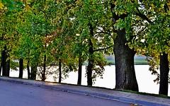 2014-10-09 Białoruś - Nieśwież (48) (aknad0) Tags: białoruś nieśwież krajobraz park jeziora drzewa