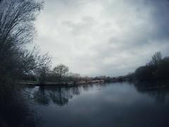 Misty Albyns Lake … (marc.barrot) Tags: reflection shotoniphone nature rain landscape trees lake uk rm13 london havering rainham hornchurchcountrypark albynslake