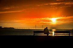 Sunset and silhouette (Maria Eklind) Tags: ribersborg sunset bench himmel sweden outdoor västrahamnen beach silhouette malmö strand öresundsbron solnedgång bro bridge silhuetter sky riban skånelän sverige se