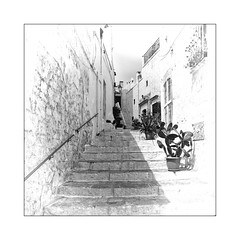 Les cactus (Jean-Louis DUMAS) Tags: noir blanc pouilles italia italie blackandwhite bw nb town village street rue ruelle route bâtiment monochrome noireblanc escaliers stairs voyage travel trip cactus plantes