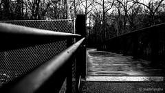 Leading to the bridge (@manylaughs) Tags: manylaughs bridge leading leadingedge blackandwhite bnw mono monochrome barcroftpark arlingtonva