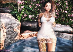 In-Paradise-☺ (ςђєяяч's Ⓢʇץℓǝ) Tags: saturdaysale phoenix newness llcocollc catwa catyabentohead applier maitreya mesh mainstore deetalez