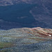 Sunlit Rock