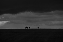 Horses (Klaus Ficker (Thanks for 5,000,000 views)) Tags: horses clouds storm bw thunderstorm rain kentuckyphotography klausficker usa kentucky canon eos5dmarkii