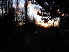 St Mary's Churchyard, Perivale: sunset (John Steedman) Tags: perivale sunset london uk unitedkingdom england イングランド 英格兰 greatbritain grandebretagne grossbritannien 大不列顛島 グレートブリテン島 英國 イギリス ロンドン 伦敦 stmarys church churchyard friedhof cemetery grave monument cgth graveyard cementerio cimetière tomb
