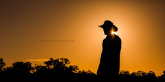Jackaroo, Australia (Robert Lang Photography) Tags: australia donnycolleencostello nt newcrown newcrownstation northernterritory outback outbackaustralia outbackstation rmwilliams rmwilliamsoutbackmagazine robertlang robertlangphotography robertlangaustralia robertlangportlincoln wwwrobertlangcomau jackaroo station cattle cattlestation stationworker akubra akubrahat sun sunset sunrise sunshine sunflare sunlight sunrays silhouette shape shadow rural country tree trees orange bold contrast copyspace negativespace horizontal man person noface aussie work hardwork color colour