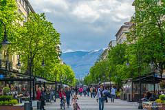 City of Sofia (CKostova) Tags: sofia trees buildings people mountain