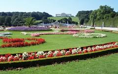 Viena, Schönbrunn, jardines  Palacio (EduOrtÍn.) Tags: jardín schönbrunn flores hierba arbol cielo monumento fuente arcos gente viena austria