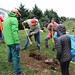 Ayrsley_Tree_Planting_2019_ (25)