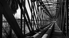 Puerto de Málaga (David J. Quintero) Tags: altocontraste bn puerto puente