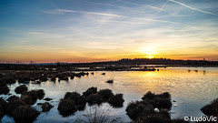 Sunset of february (Lцdо\/іс) Tags: sun sunset lцdоіс sunny day belgique belgium belgie fagnes fagnard paysage landscape lac lake countryside beauty coucher soleil
