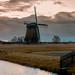 Windmill   Stompetoren