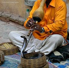 EL RETO de Marzo : ARTES y OFICIOS -encantando el serpiente (Rajasthan) (gabi lombardo) Tags: mani hands musicista encantadordeserpientes snakecharmer street rajasthan serpente klapperschlange cesto korb orologio montre uhr reloje watch strumentomusicale camicia hemd orangecolor arancione