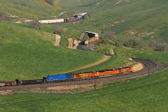Bealville meet (Moffat Road) Tags: bnsf unionpacific up meet tehachapipass bealville allard tehachapimountains freighttrain railroad locomotives spring springtime train california ca