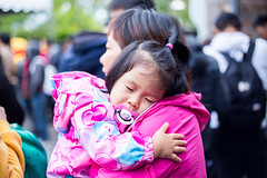 20181208-IMG_6076 (星情) Tags: 台北市 canon 6d 花博 中山