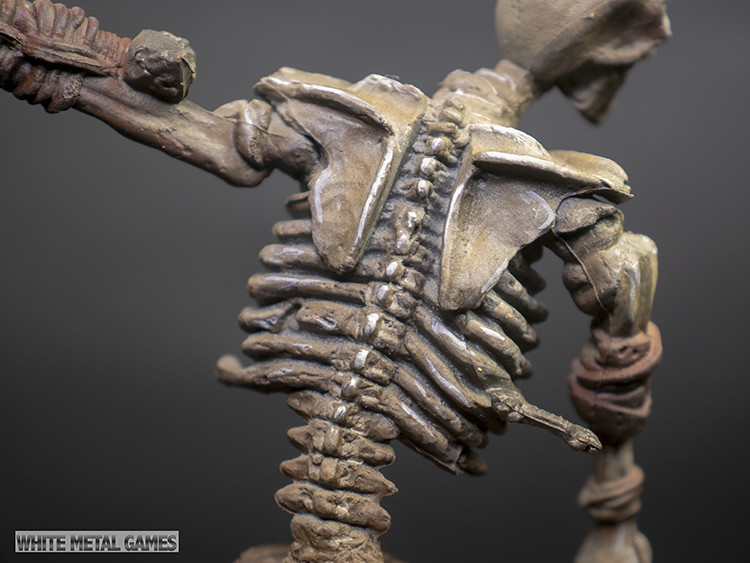 The World's Best Photos of skeleton and tabletop - Flickr