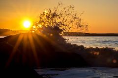 Splashing waves (MaxGag) Tags: waves sunrise irvingnaturepark beach rise tide fundy