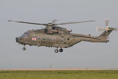 Royal Navy Merlin 3 ZJ998 landing at Deptford Down (Sarah Ward Aviatrix) Tags: royalnavy merlin zj998 deptforddown spta military d123 helicopter aircraft aviation flyingairplane