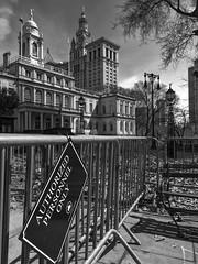 New York City (23)