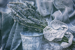 11/30: Shades of grey - 2 (judi may) Tags: april2019amonthin30pictures shadesofgrey grey lavender driedlavender lace flatlay metal stilllife tabletopphotography canon5d 50mm soft matte
