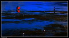 Pêche à Pied..... (faurejm29) Tags: faurejm29 canon sea seascape mer paysage nature p