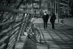 light and shadow@Hafen, Düsseldorf (Amselchen) Tags: bnw blackandwhite light shadow bokeh blur dof depthoffield mono monochrome city bike bicycle fe55mmf18za sonyilce7rm2 street