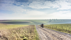 The Road, the Lynchets and the Passing Motorbikes (stevedewey2000) Tags: salisburyplain wiltshire landscape waterdeanbottom compton landscapefeatures striplynchet road byway track motorbike trailbike