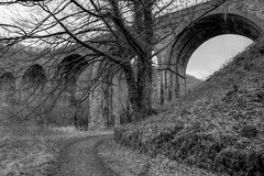 HeadstoneViaduct (Tony Tooth) Tags: nikon d7100 sigma 1750mm viaduct bw blackandwhite monochrome headstoneviaduct monsaldale cressbrook derbyshire