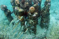 mystery (Mau Silerio) Tags: underwater photography sculpture art museum fish blue meikon sea ocean sony alpha cancun isla mujeres