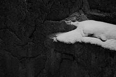(Mikko Luntiala) Tags: 2018 afsnikkor2470mmf28ged bw blackandwhite cold d600 dark finland gray grey harmaa kallio kylmä lumi luminen luonto maaliskuu march mikkoluntiala mustavalkoinen nature nikond600 rock snow snowy synkkä talvi winter