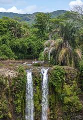 Chamarel Waterfall, Mauritius / Водопад Шамарель, Маврикий (dmilokt) Tags: природа nature пейзаж landscape река river водопад waterfall dmilokt