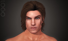 LOGO Liam Head Portrait (getLOGOed) Tags: logo bento male head liam animations expressions sexy portrait facialhair secondlife