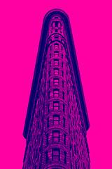 Flatiron (justingreen19) Tags: america flatironbuilding flatirondistrict historicplaces manhattanskyscraper ny nyc newyork newyorkskyscraper architecture artdeco duotone fifthavenue flatiron iconic illuminous justingreen19 landmark lookingup manhattan midtown mono neon officebuilding officewindow pink skyscraper triangular urban