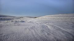 Water Dean Bottom (Redheadwondering) Tags: tokina2035mmlens tokina sonyα7ii salisburyplain wiltshire winter snow snowday landscape waterdeanbottom striplynchets