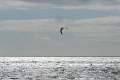2018_08_15_0199 (EJ Bergin) Tags: sussex westsussex worthing beach seaside westworthing sea waves watersports kitesurfing kitesurfer seafront jezjones