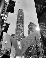 #Oculus BW (LAKAN346) Tags: architecture design organic bnw desaturated nyc newyorkcity eorld wtc worldtradecenter