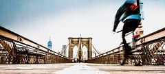 Brooklyn Bridge-10 (broadswordcallingdannyboy) Tags: ny usa us america newyork copyright leon reilly eos7d eflens cityscape canon winter creative lightroom metropolis iconic 2019 newyorkcity reflection lights citylights newyorkstateofmind newyorkminute donotcopy leonreilly eastcoast nyc city copyrightleonreillyphotography newyorkwinter february2019 brooklyn bridge brooklynbridge cyclist cycling motion movement blur