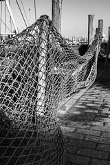 Hafen Neuharlingersiel (deakb) Tags: nikon nikkor d500 2470 f28 deutschland germany nordsee strand neuharlingersiel port hafen wattenmeer waddenzee wadden sea water sand winter sky road village