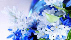 Five Brilliant Ways To Advertise Pretty Flowers Wallpaper | pretty flowers wallpaper (franklin_randy) Tags: pretty flowers amazing wallpapers iphone wallpaper phone for android hd tumblr desktop pink spring