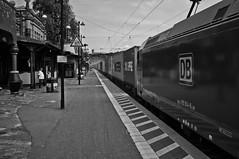 Heavy Man Watching A Train (RadarO´Reilly) Tags: uelzen niedersachsen germany railwaystation bahnhof bahnsteig platform zug train hundertwasserbahnhof sw bw blanconegro monochrome noiretblanc zwartwit