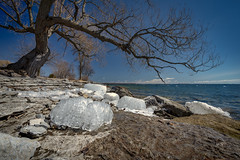 Ice cubes (Dan Fleury Photos) Tags: amherstview cans2s 1635f4 alpha sony season spring limestone shore lake water lakeontario ygk kingston loyalist ontario canada ca