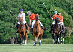 Charge of the Polo ponies (manxmaid2000) Tags: polo ponies riders pony horse sport ball game group pitch grass green orange horseback team mallet people isleofman manx iom turf horses telephoto fuji 100400
