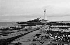 Causeway to St. Mary's - B&W (Gilli8888) Tags: whitleybay coast coastal coastline northsea northeast nikon p900 coolpix sea water marine blackandwhite stmaryslighthouse stmarysisland lighthouse monochrome rocks sunrise causeway