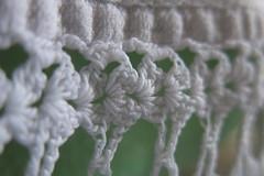 (carloancona) Tags: cloth macromondays