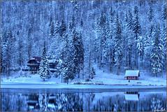 Gennaio (Luciano Silei - sky7) Tags: winter inverno fusine tarvisiano lagodifusine lago lake frozenlake snow frozen mirror water alps alpi alpigiulie landscape paesaggio panorama wideangle lucianosilei canon6d forest canon70200