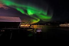 Northernligt in the harbor (dinni69) Tags: harbor norhernlight nordlys kilbotn harstad nordnorge boat båt aurora frostrøyk icesmog frostsmoke nature natur upnorth norway