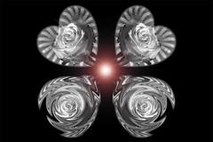 still-life 19-02-2019 015 (swissnature3) Tags: stilllife macro flowers rose light heart love photoshop