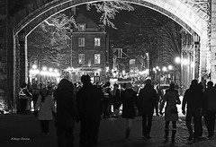 Quebec City (albyn.davis) Tags: blackandwhite people silhouettes crowd light lights night street city urban quebec travel canada